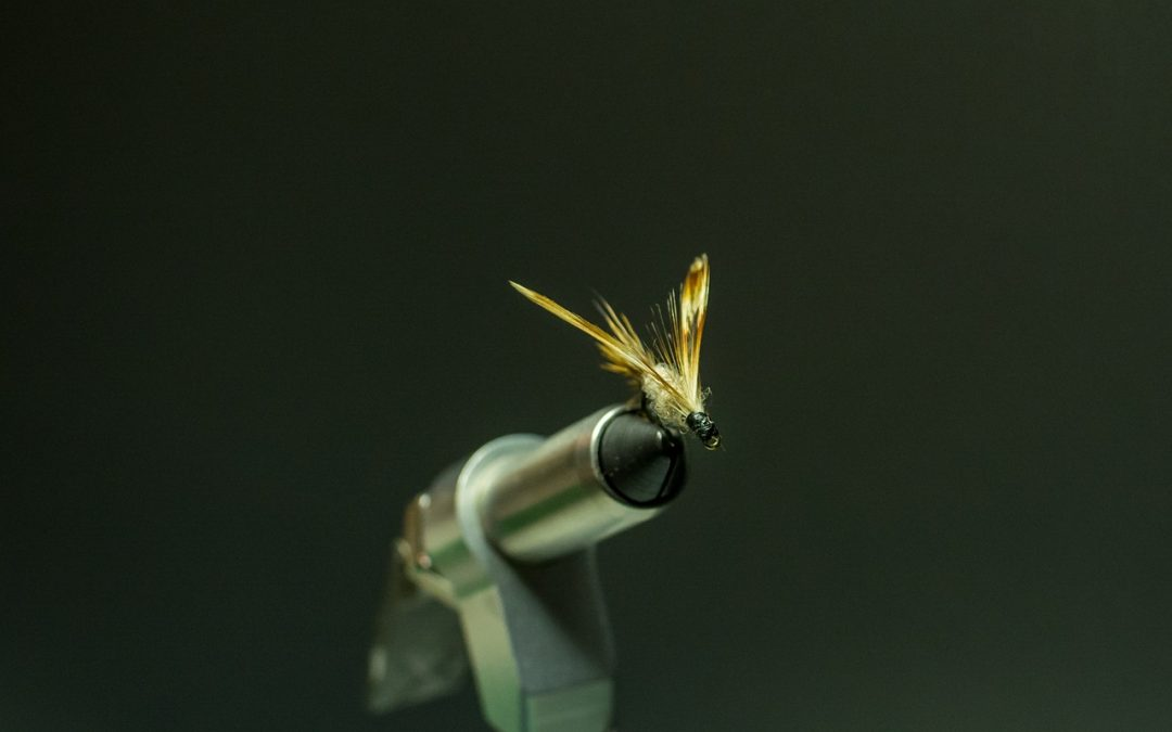 Freshwater Flies: The Four Essentials for Fly Fishermen